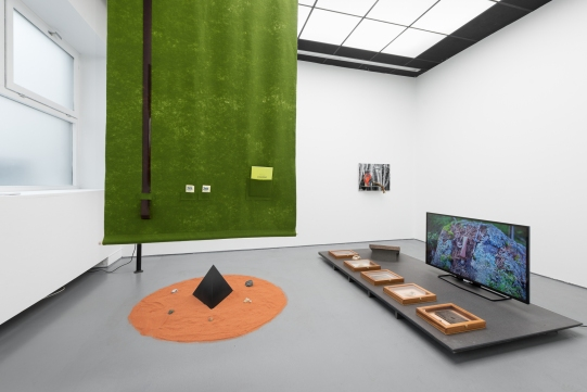 Gruppe 11 / installation view